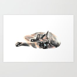 Siamese will cut you. Art Print