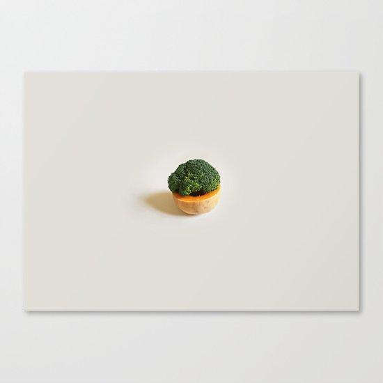 Obri Maur Canvas Print