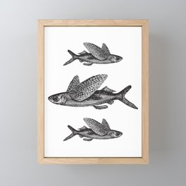 Flying Fish | Black and White Framed Mini Art Print