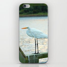 Egret Keeping Watch iPhone Skin