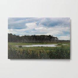 nature reserve Metal Print