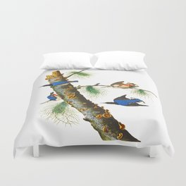 White-breasted Black-capped Nuthatch Bird Duvet Cover