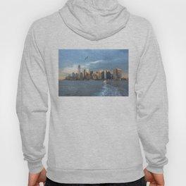 City Skyline w/ Bird Hoody