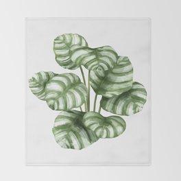 Calathea Green Leaf Plant Throw Blanket