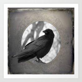 Portrait Of A Crow Art Print