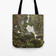 Lodore Falls waterfall after heavy rain. Borrowdale, Cumbria, UK. Tote Bag