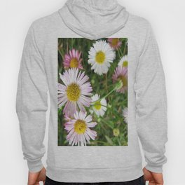Daisies in the Grass Hoody