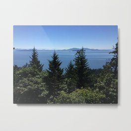 Oyster  Dome Metal Print