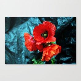 Poppy flower bouquet Canvas Print