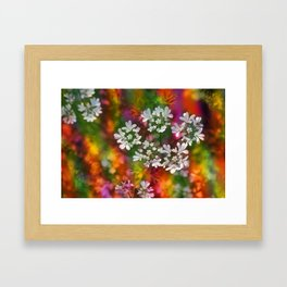 Floral Splash Framed Art Print