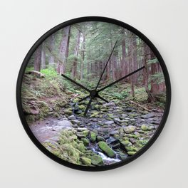 Sol Doc Falls Trail, mossy rocks Wall Clock