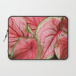 Caladium Laptop Sleeve