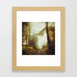 Path to Inner Peace Framed Art Print