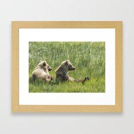 Unbearably Cute - Bear Cubs, No. 5 Framed Art Print