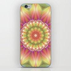 Beauty Mandala 03 iPhone & iPod Skin