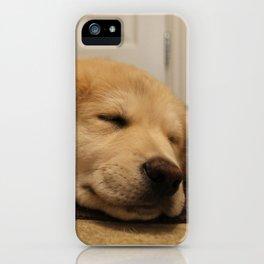 Sleepy Goldy iPhone Case
