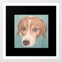 beagle Art Prints featuring Beagle by Thomas Whitfield