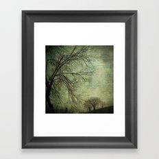 Mysterious Trees Framed Art Print