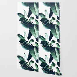 Ficus Elastica #26 #foliage #decor #art #society6 Wallpaper