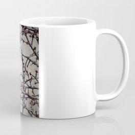 the bluebird and the cherry tree Coffee Mug