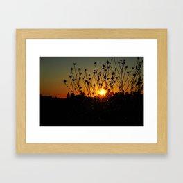 sunset & flowers Framed Art Print
