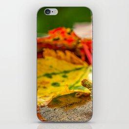 Autumn Leafs (Color) iPhone Skin