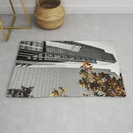 Fall in New York Rug