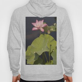 Pink Lotus by Teresa Thompson Hoody