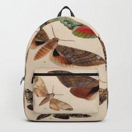 Vintage Natural History Moths Backpack