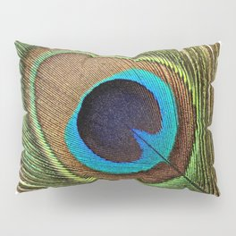 Peacock_20171201_by_JAMFoto Pillow Sham