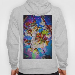 Abstract Perfection 14  Spring Hoody