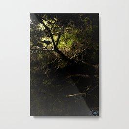 Tree at night Metal Print