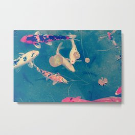 Lie a fish in the pound Metal Print