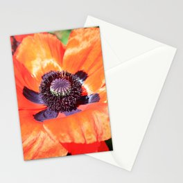 mohn 2 Stationery Cards