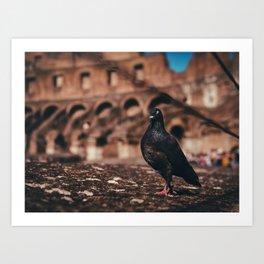 Colosseum Pidgin Art Print
