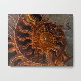 Earth treasures - brown and orange fossil Metal Print