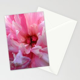 Blush - Pink Peony Stationery Cards