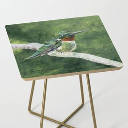 Romeo the Hummingbird by Teresa Thompson Side Table
