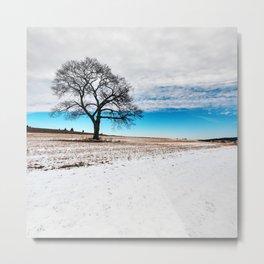 Divided Winter Metal Print