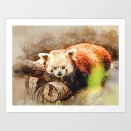 Red Panda #animal #watercolor #society6 Art Print