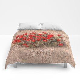 Sandia Cactus Flowers Comforters
