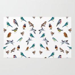 I love birds Rug