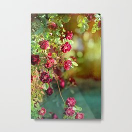 Springtime Roses Metal Print
