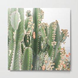 Giant Cactus Metal Print