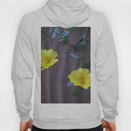 Longwood Gardens - Spring Series 155 Hoody