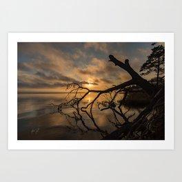 Colington, NC Golden Sunset Art Print
