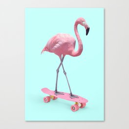 SKATE FLAMINGO Canvas Print