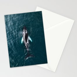 Humpback Whale in Iceland - Wildlife Photography Stationery Cards