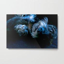 DACKEL DOG #36 Metal Print