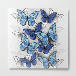 Composition of White and Blue Butterflies Metal Print